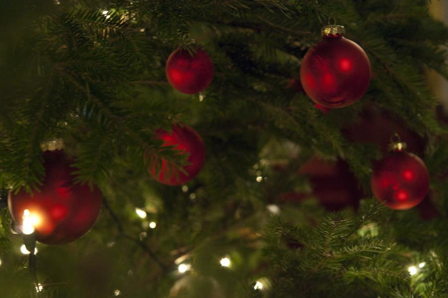 A closeup photo of Christmas tree limbs with red bulbs hanging from them.
