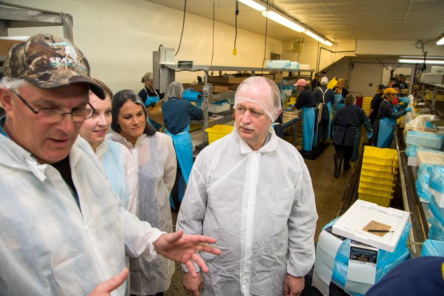 Fisheries and Aquaculture Minister Keith Colwell, right, tours Ka' Le Bay Seafoods Limited in Glace Bay with, from left,  manager Jan Voutier, Audrey Van Oostrum of Nova Scotia Fisheries Sector Council and Karen Wong-Petrie, Department of Fisheries and Aquaculture.