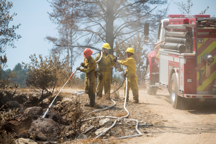 Department of Natural Resource firefighters work on a fire in Keji